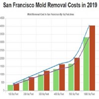 All US Mold Removal San Francisco CA - Mold Remediation Services