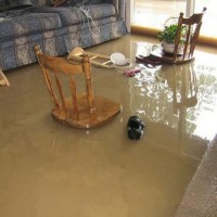 Water Mold Fire Restoration of Indianapolis