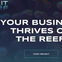 Split Reef