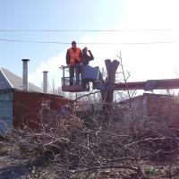St. Charles Tree Service