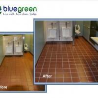 Bluegreen Carpet And Tile Cleaning