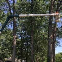 Vanderbilt Tree Service