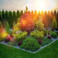 Lawn and Landscaping Pros St. Pete FL
