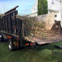Arlington Heights Junk Removal