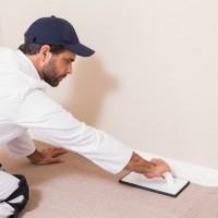 OC Professional Carpet Repair