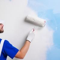 Excellent Painters Denver