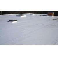 Flat Roof Inc.