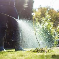 LawnPro Pest Controls and Fertilizers