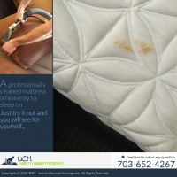 UCM Carpet Cleaning Centreville | Carpet Cleaning