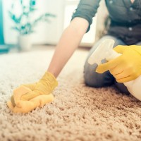 Jacksonville House Cleaning Maid