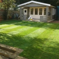 Level Lawns & Landscaping