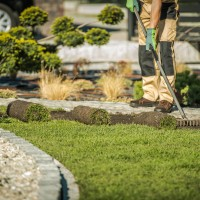galesburglandscaping.com - Pest and Insect Control