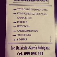 ESCRIBANO - DOCTOR NICOLÁS GARCÍA RODRÍGUEZ