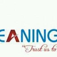 Cleaning Frenzy Zimbabwe